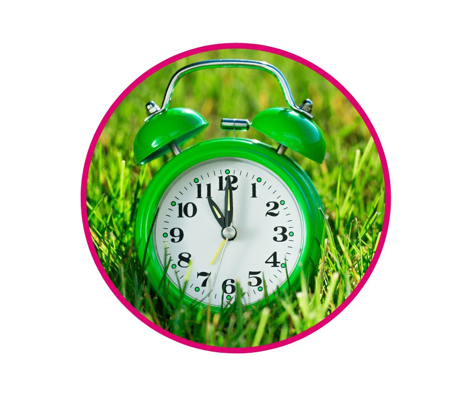 Clock on grass