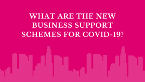 What are the new business support schemes for covid-19?